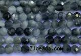 CEE560 15 inches 2mm faceted round eagle eye jasper beads